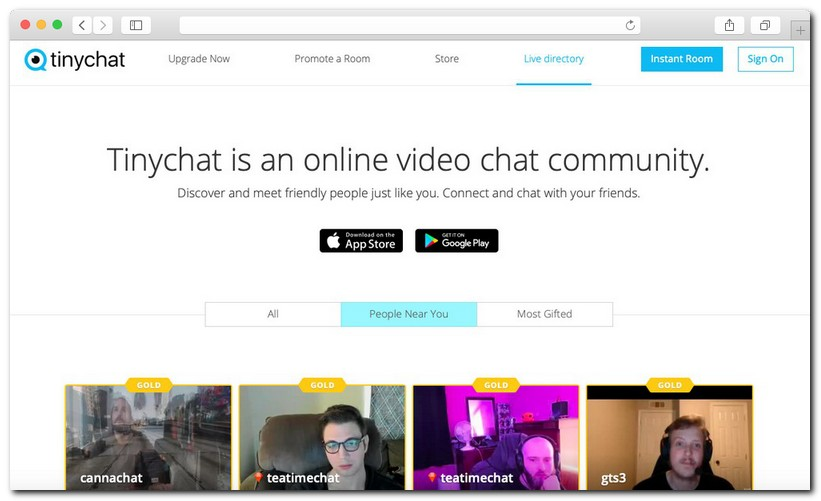 TinyChat Review 9 - TinyChat real-life review 2020