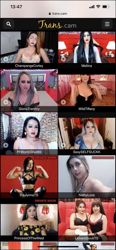 Trans Cams 6 - Trans Cams Compilation 2020